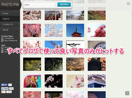 Photo pinの写真検索結果