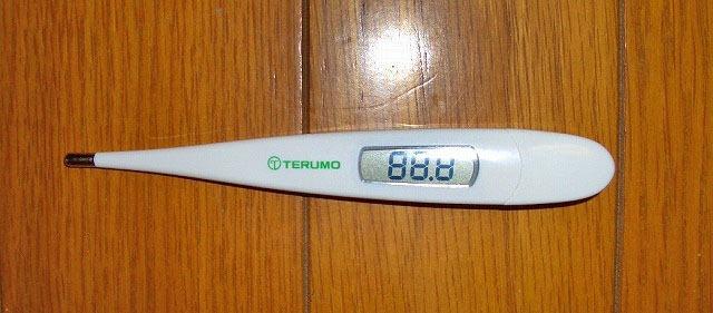 テルモ電子体温計 ET-C205S