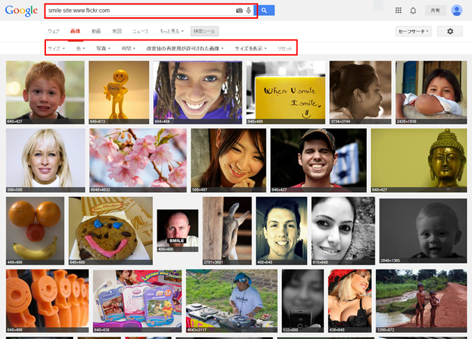 Flickr内を検索する