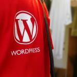 WordPressテーマなどでは、PHP関数で直接ファイル操作をするのは非推奨、WP_FileSystemを使って操作するのが望ましいらしい