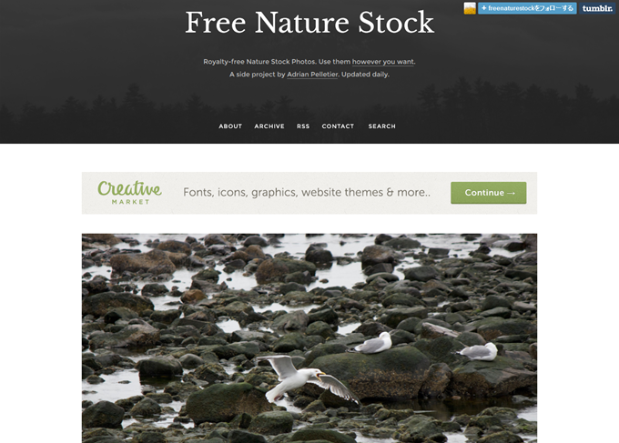 Free Nature Stock · Royalty-free stock photos · Updated daily