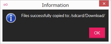 ファイルコピーが成功