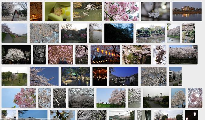 PhotoPinの検索結果