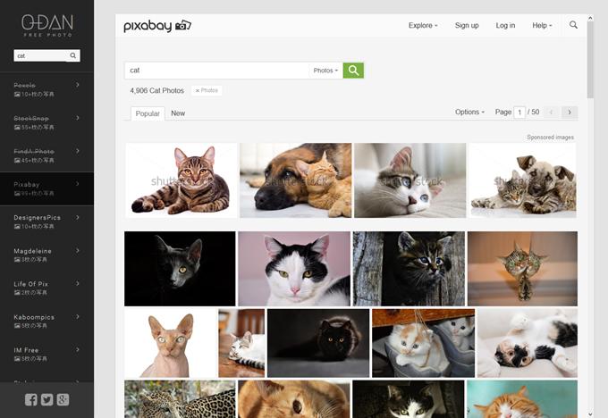 O-DANで猫画像を検索
