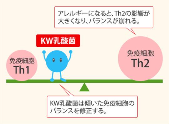 KW乳酸菌の免疫バランスを整える効果