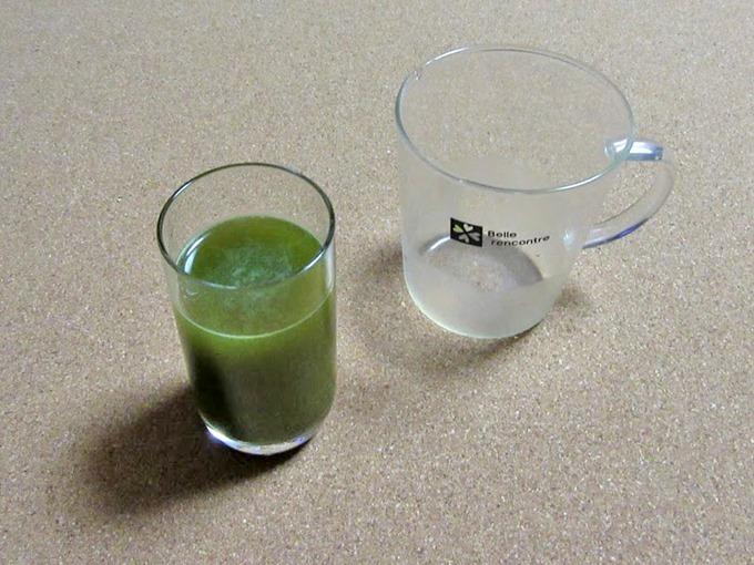 青汁粉末にほうじ茶150mlで割って作成した状態