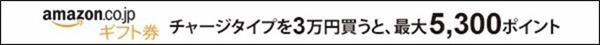 チャージタイプ3万円を買うと5300ポイント付与