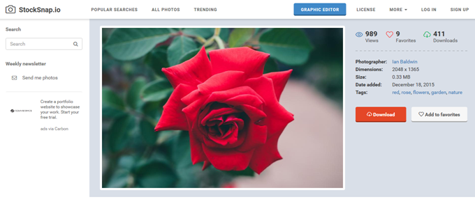 Free image of red, rose, flowers - StockSnap.io
