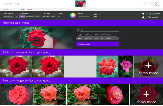 バラの写真の検索結果