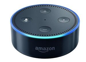 頭が青々としているAmazon Echo Dot