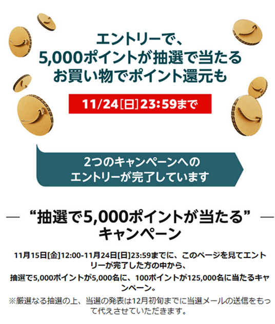抽選で5,000ポイントが5,000名に、100ポイントが125,000名に当たるキャンペーン。